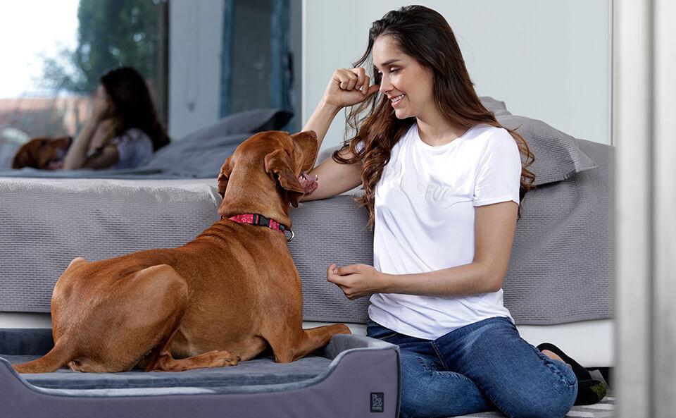 Collar Mylu Totto Pets